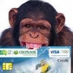 Блокировка карт международных платежных систем VISA и MasterCard